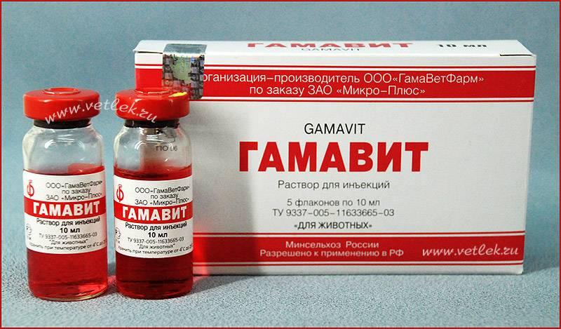 Витаминный комплекс гамавит: инструкция по применению ветпрепарата