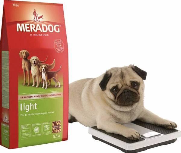 Корма для собак, список кормов для собак производителя champion petfoods, отзывы на официальном сайте, какой корм и где лучше купить, топ таблицы рейтинга сухих кормов
