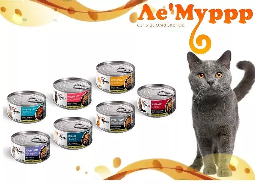 Корм для кошек гурмет