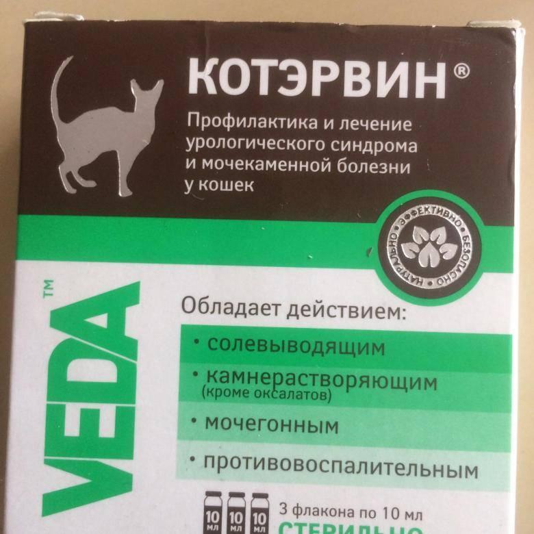 Котэрвин для кошек - инструкция по применению, состав, дозировка, аналоги, отзывы