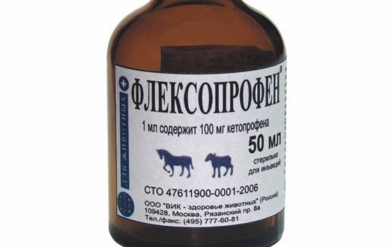 Флексопрофен для кошек: инструкция по применению, дозировки и особенности лечения