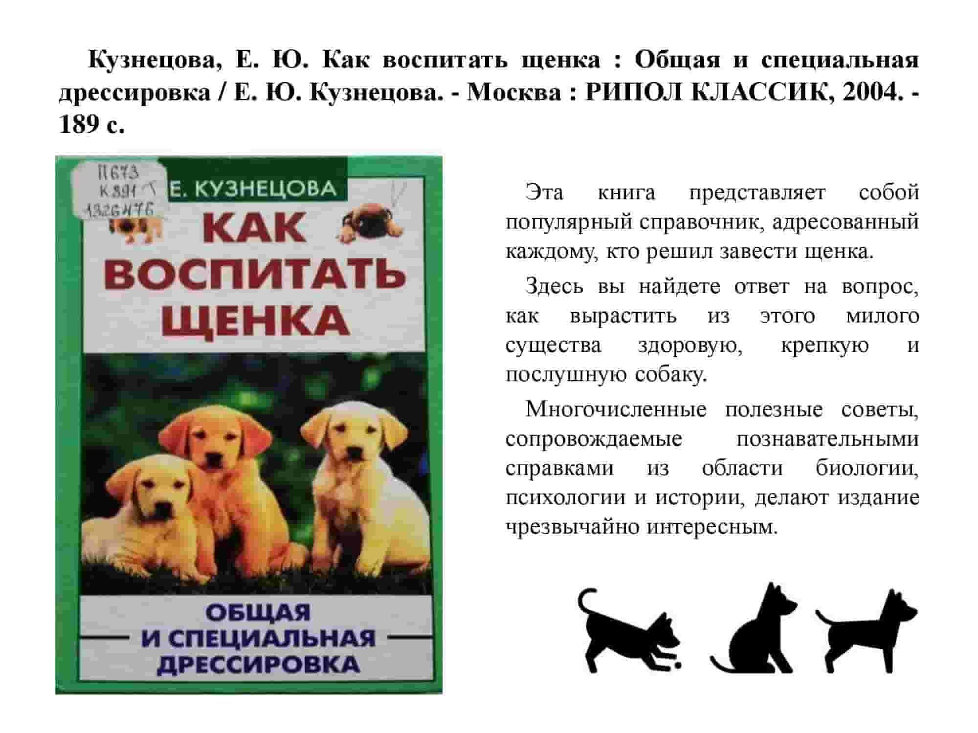 Дрессировка лайки — этапы воспитания щенка ⋆ собакапедия