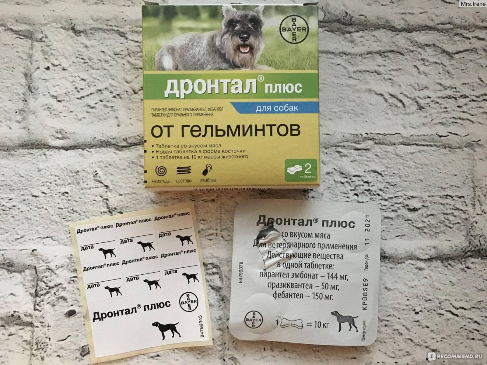 Дронтал для кошек и котов: цена, инструкция по применению, отзывы