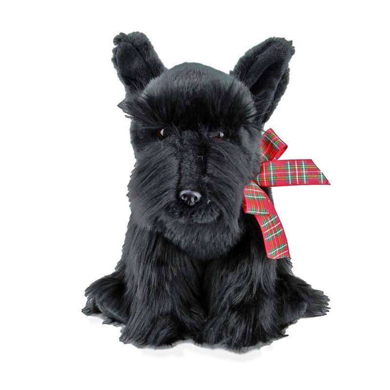 Скотч-терьер (шотландский терьер) : описание породы с фото и видео