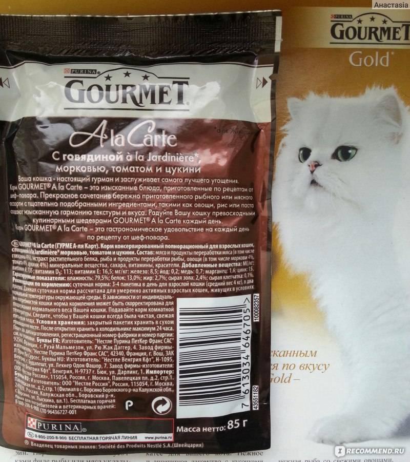 Из чего состоят корма гурмэ для котов: как правильно давать gourmet кошкам