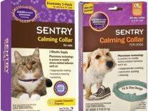 Ошейник с феромонами для кошек: какой лучше, отзывы | успокаивающий, купить, цена