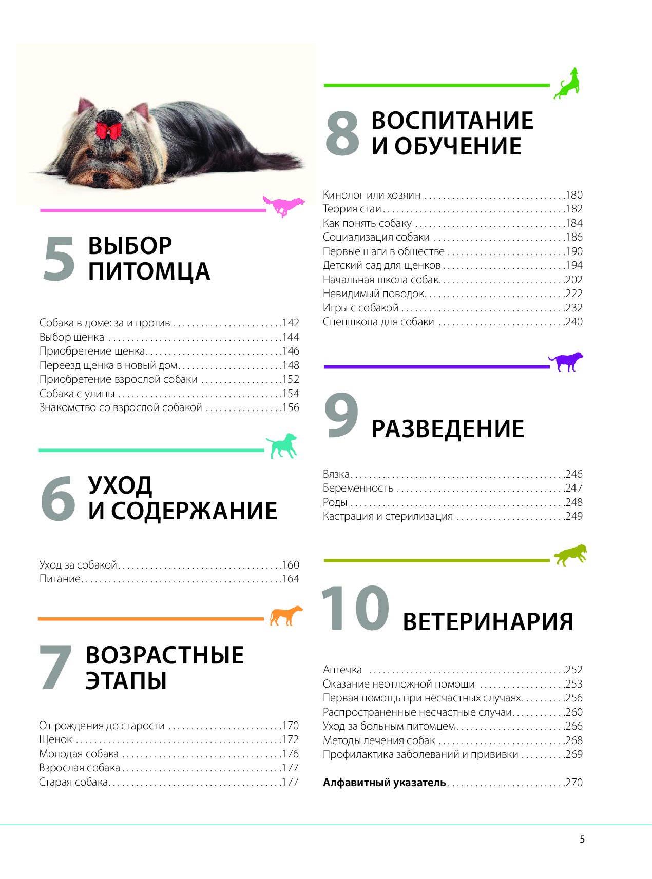 Как приучить щенка к туалету и еще 9 советов по воспитанию щенка. купить собаку маленькой породы: воспитание щенка и уход за щенком.
