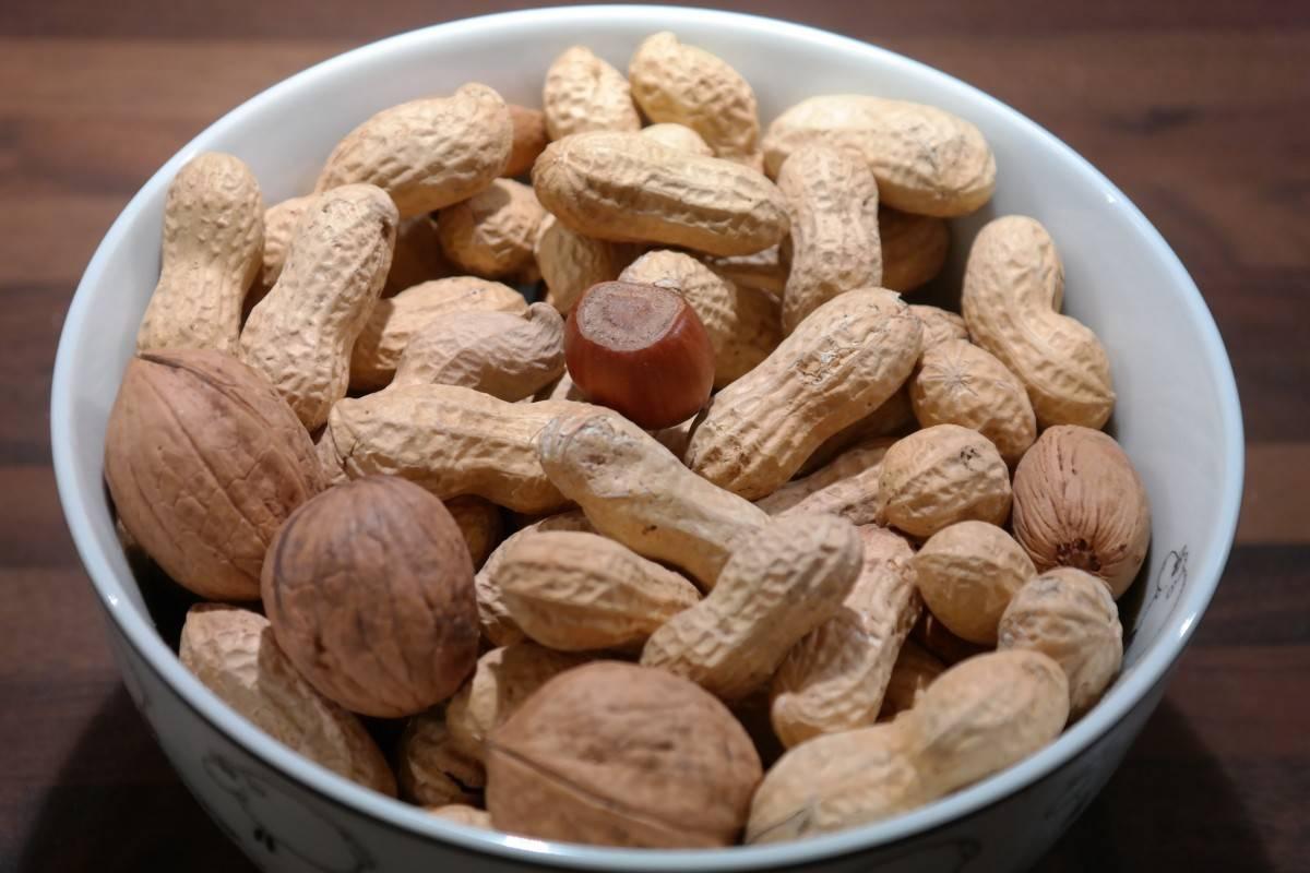 Можно ли собакам арахис? какие орехи можно давать собакам