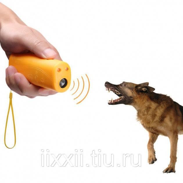 Отпугиватель собак своими руками: схема, мощный вариант