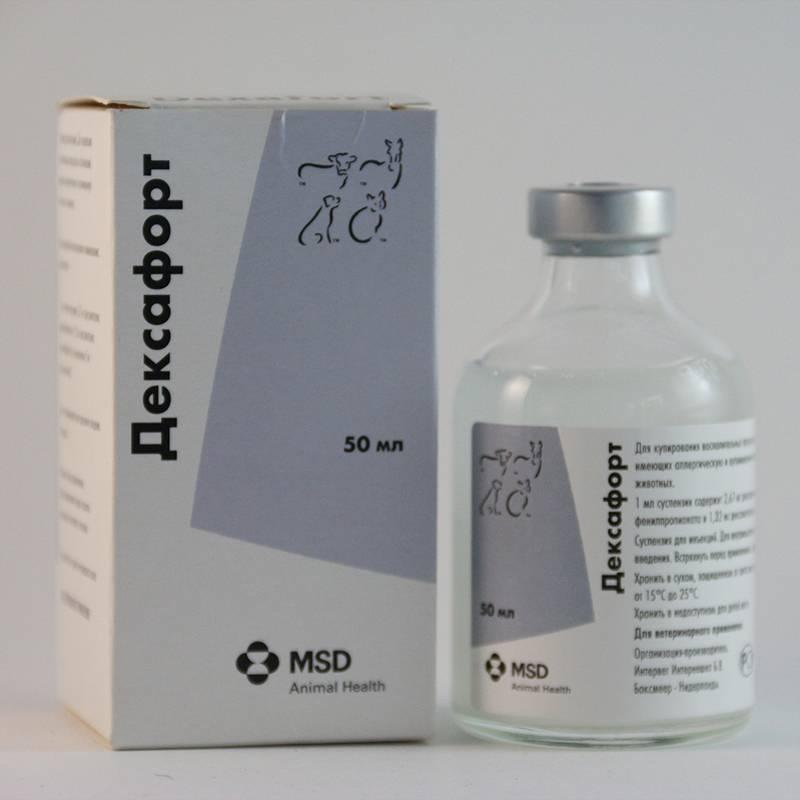 «дексафорт» для собак и кошек: инструкция по применению, дозировка и побочные эффекты