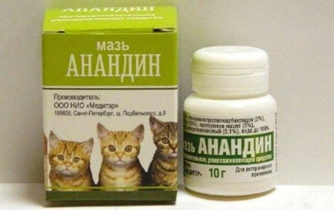 Анандин для кошек: инструкция по применению, отзывы, цена, капли и раствор