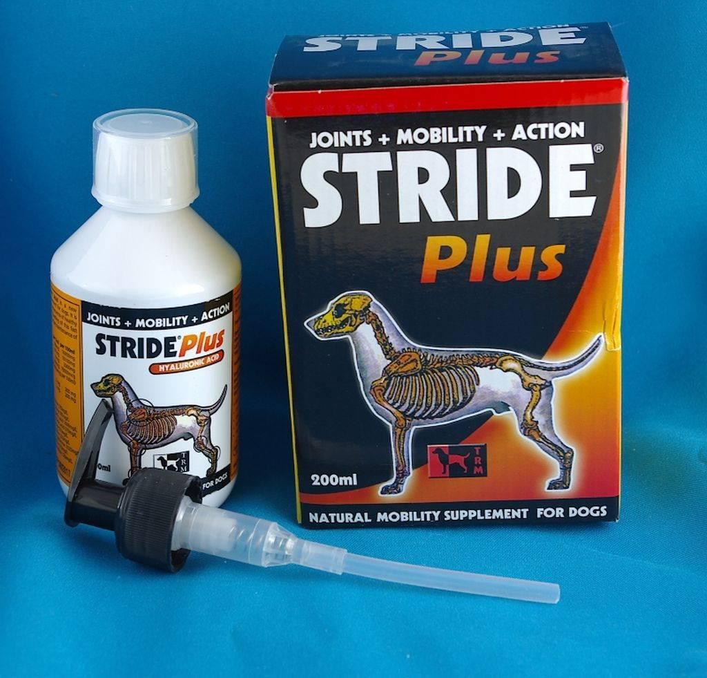 Страйд плюс для собак инструкция по применению, состав, формы выпуска, аналоги, цена, отзывы