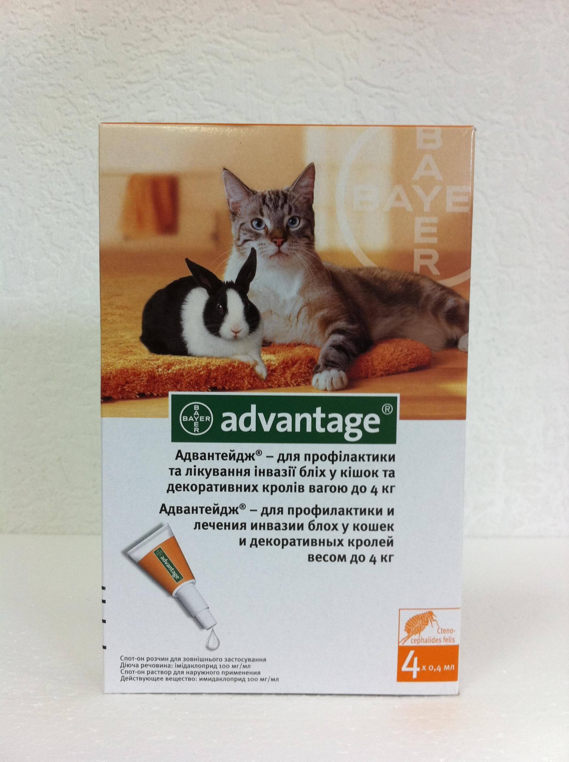 Адвантейдж для кошек: инструкция по применению, отзывы