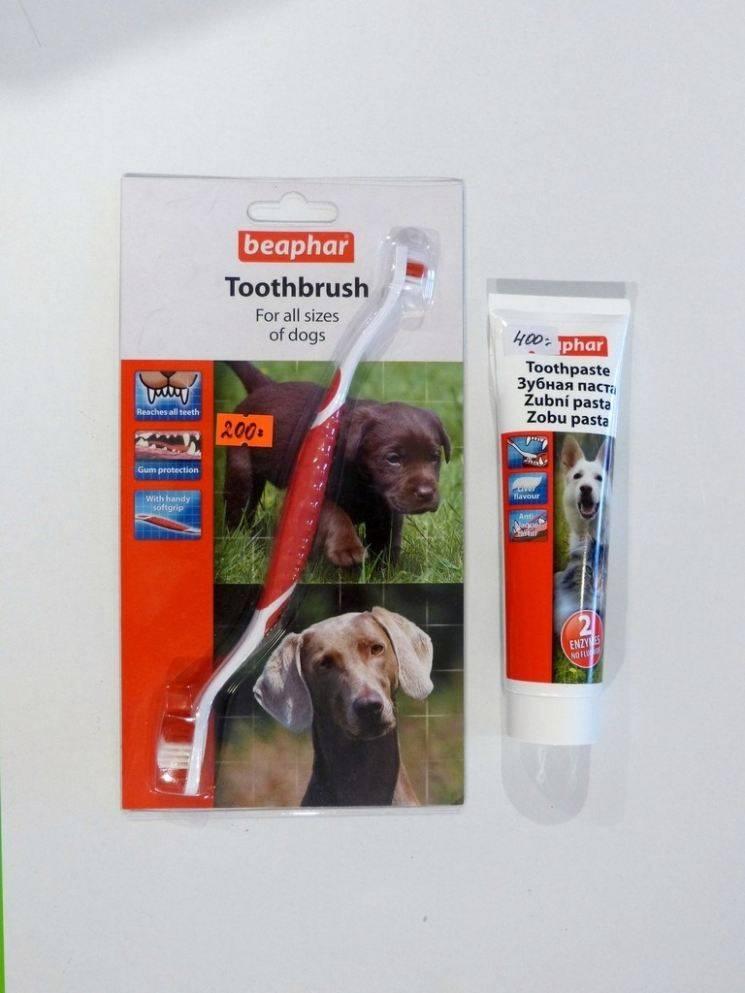 Отбеливающая зубная паста - рейтинг, рекомендации стоматологов