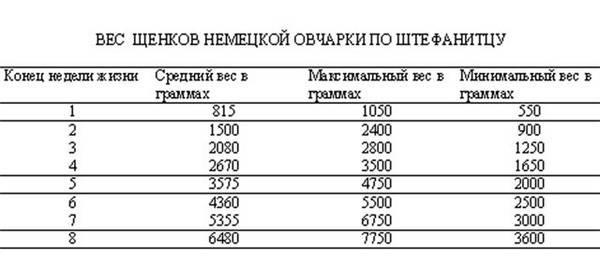 Рост щенка восточноевропейской овчарки по месяцам