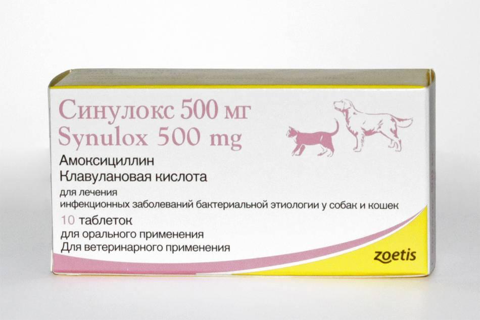 Ветеринарный препарат   синулокс rtu от zoetis