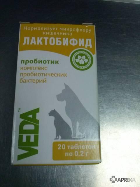 Лактобифид для собак: инструкция по примению, состав, отзывы