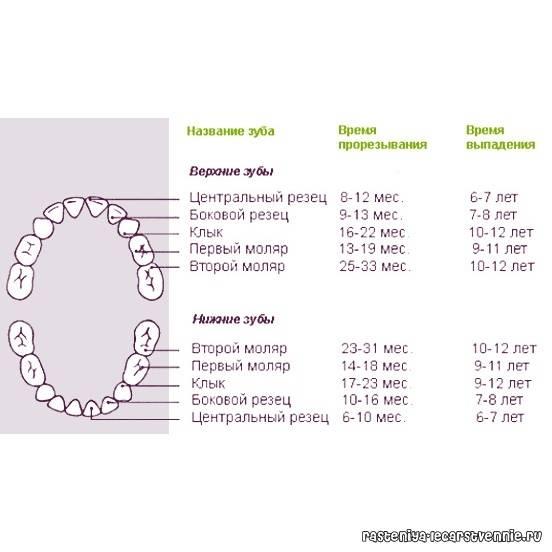 Свищ на десне: причины, симптомы, лечение и реабилитация
