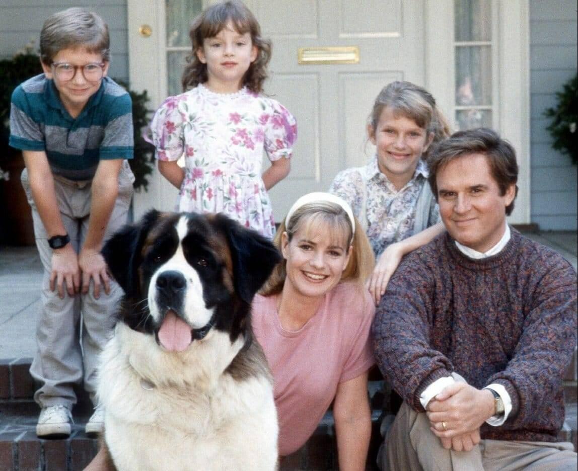 Какой породы главный питомец в фильме «бетховен»? основные черты собак +видео