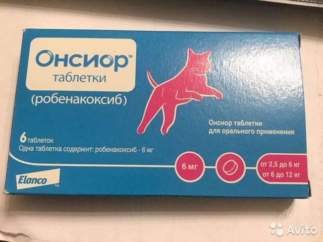 Онсиор для кошек – лекарство от боли