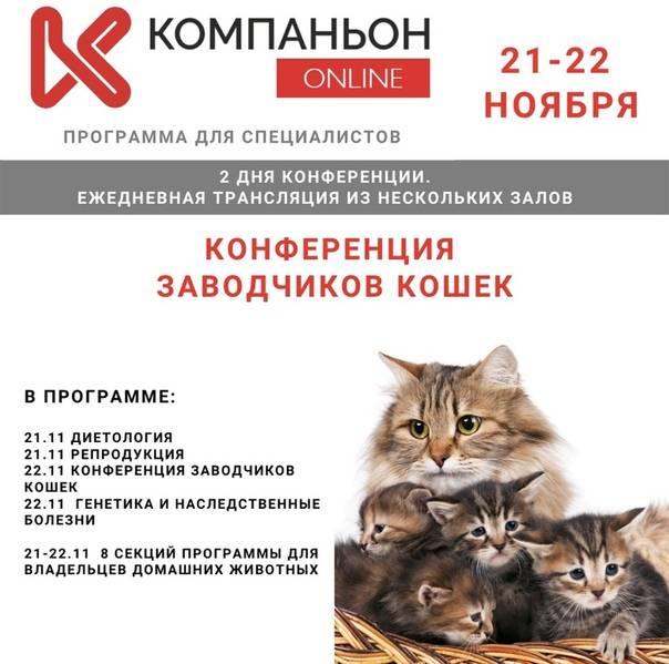 Закон о регистрации домашних животных