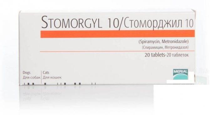 Стоморджил — антибактериальный препарат для кошек