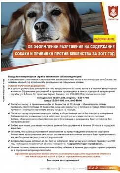 О христианском отношении к собаке / православие.ru