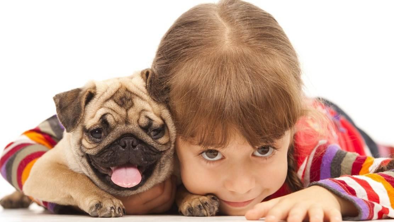 Дети и собаки: какого песика завести ребенку?