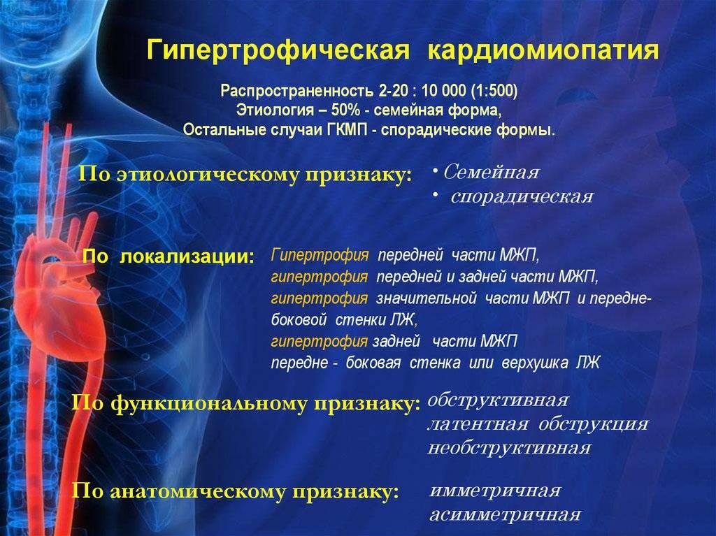 Гипертрофическая кардиомиопатия у кошек