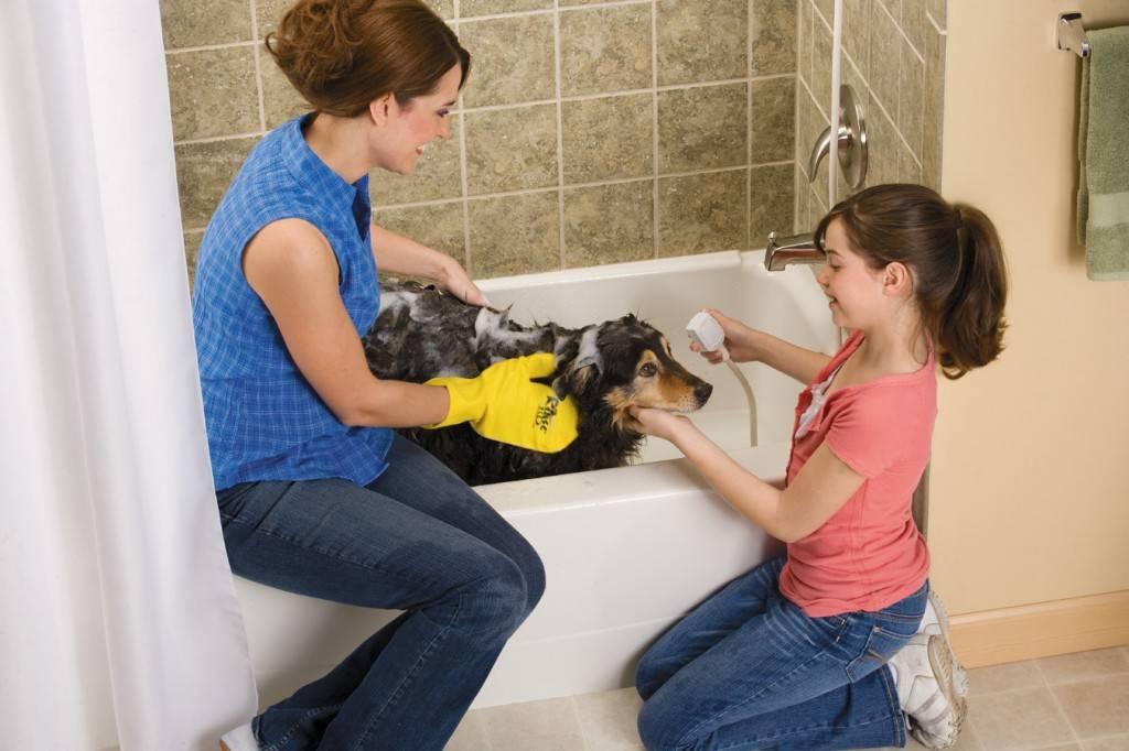 Дегтярное мыло от блох: польза и вред, особенности, чем заменить