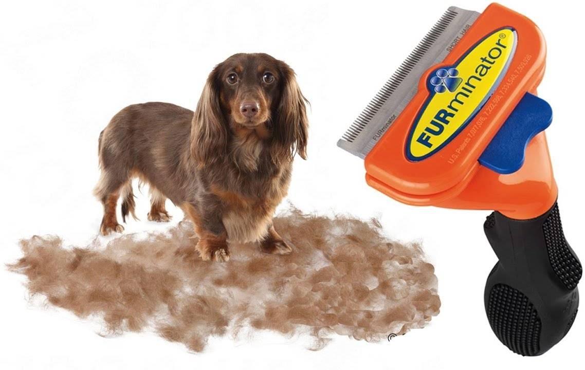 Фурминатор для собак — преимущества и недостатки