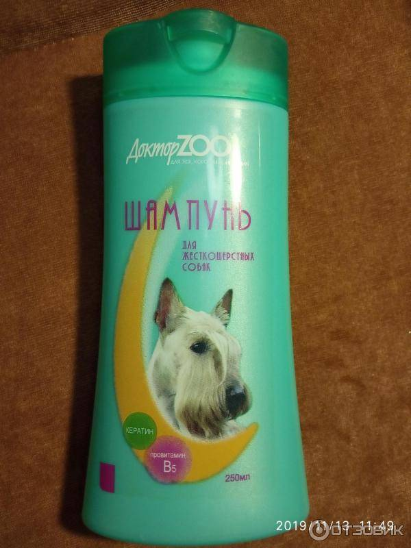 15 лучших шампуней для собак