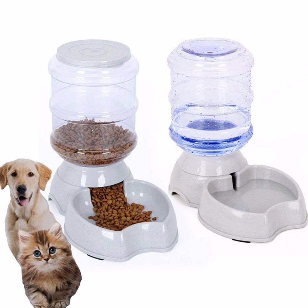 Автоматическая кормушка для собак: как выбрать электронную автокормушку с таймером для крупных и мелких пород собак?