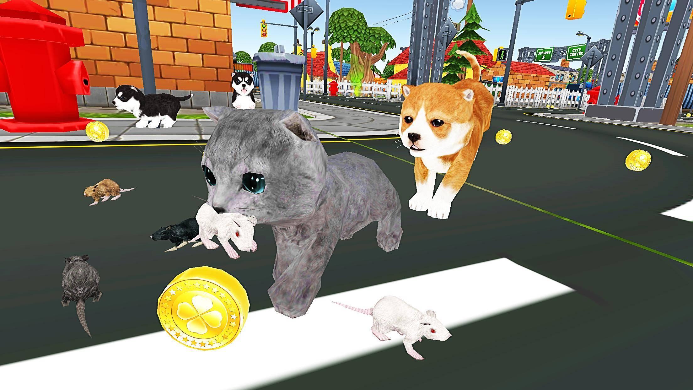 ᐉ как поиграть с котом дома – как играть с котенком? - zoomanji.ru