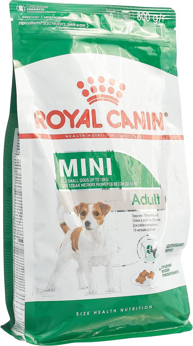 Корм для собак роял канин (royal canin): отзывы, состав, цены корм для собак роял канин (royal canin): отзывы, состав, цены
