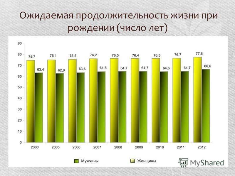 Продолжительность жизни собак породы лабрадор. сколько живут лабрадоры