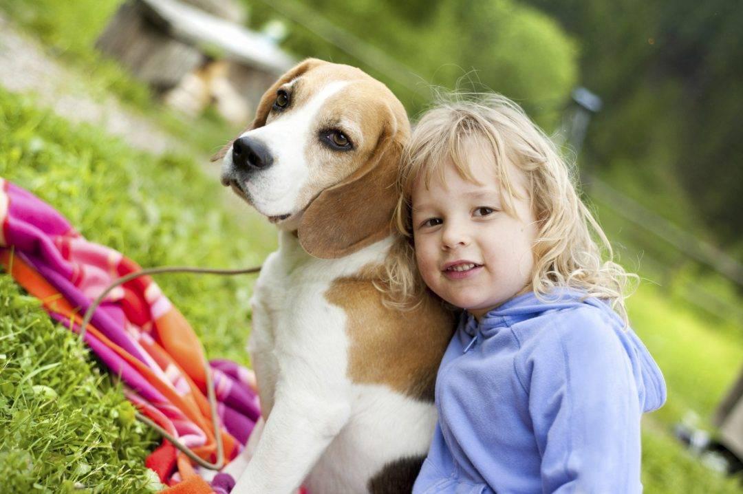 ТОП-10 породы собак для детей