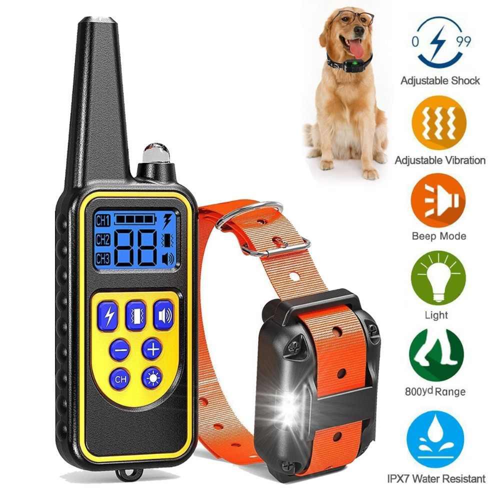 Электронный ошейник для собаки как важный элемент дрессировки охотничьих собак