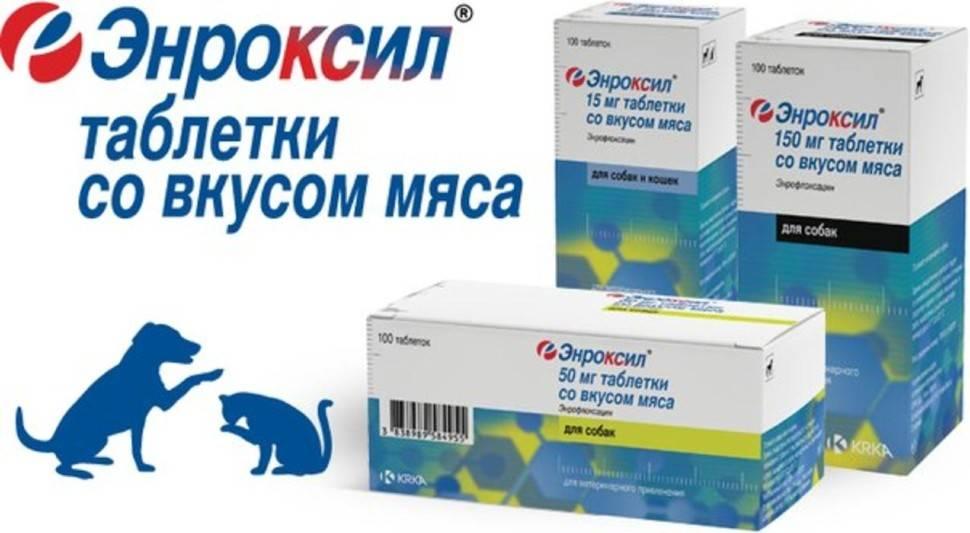 Энроксил 10% раствор для инъекций