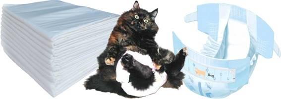 ᐉ памперсы для кошек - ➡ motildazoo.ru