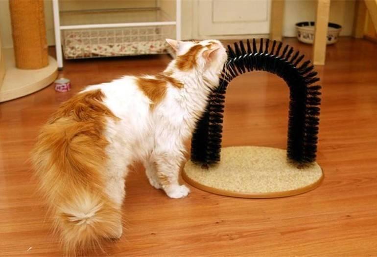 Организовываем кошачий досуг — делаем игрушку своими руками!