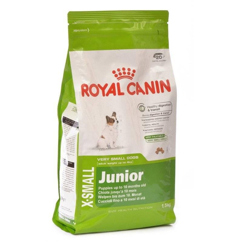 Корм для собак royal canin: отзывы и обзор состава