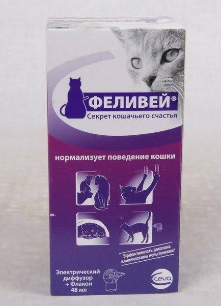 Феливей для кошек - феромоны, спрей, диффузор, инструкция по применению, цена, отзывы