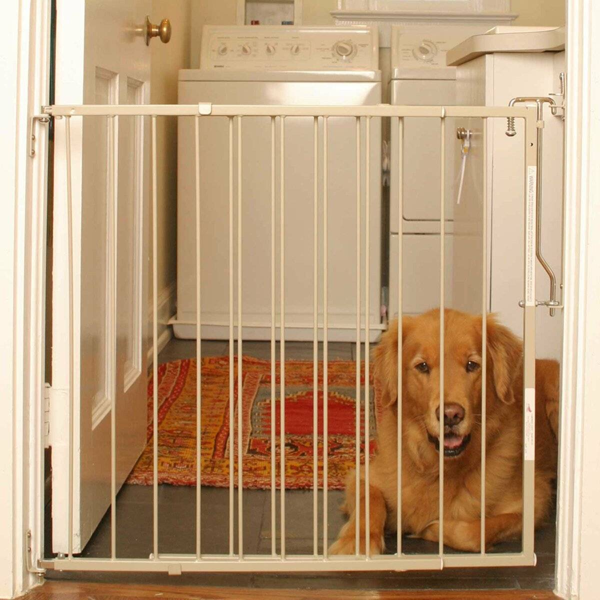 Барьер для собак в квартиру в дверной проем — назначение