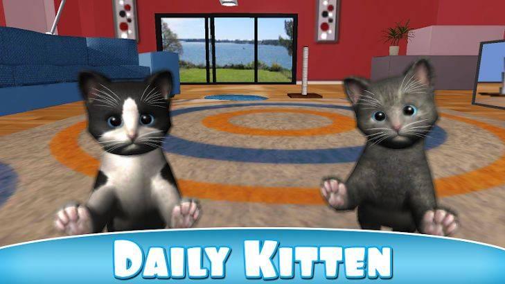 Игры с кошкой - почему они любят играть, список игрушек для животного | beauty-line14a.ru