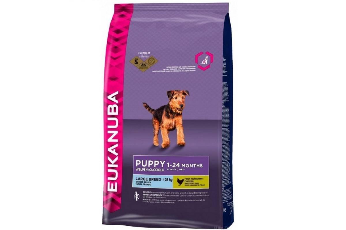 Eukanuba корм для собак — отзывы и разбор состава