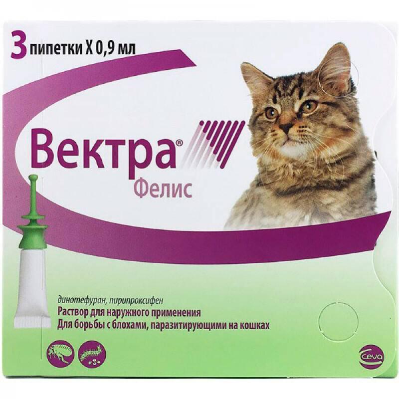 Капли деликс для кошек: показания и инструкция по применению, отзывы