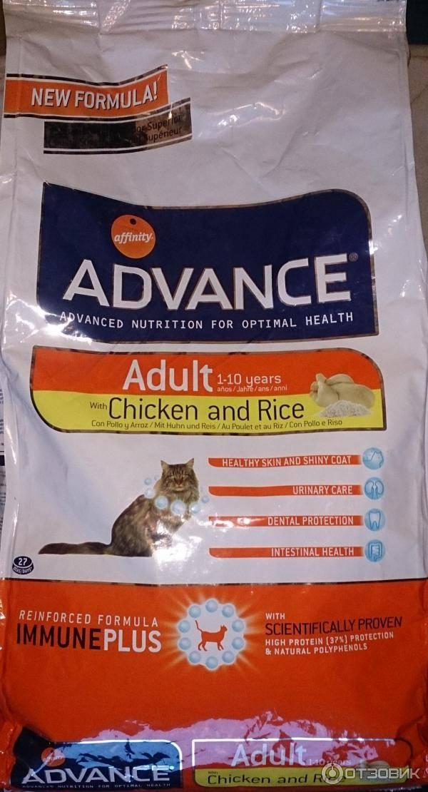Корм advance для кошек: отзывы, где купить, состав