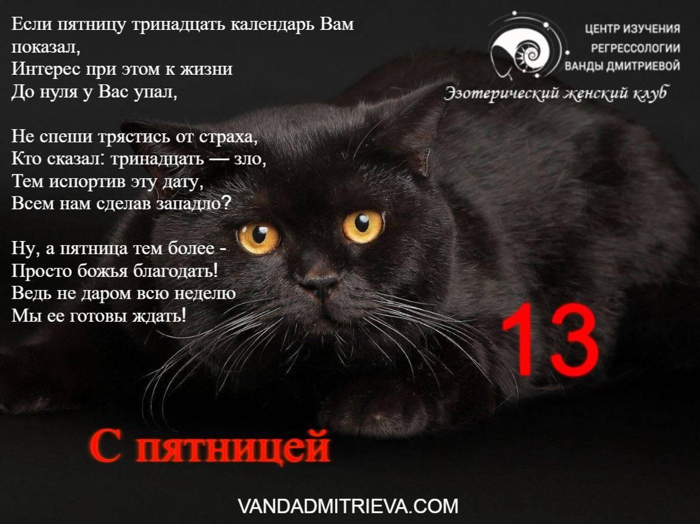 К чему приходят чужие кошки: что значит примета