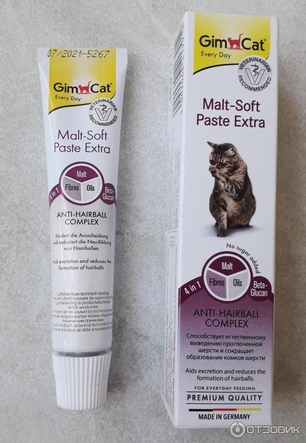Выводим шерсть из желудка кошки в домашних условиях: симптомы и лечение, паста для выведения